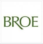 http://broerealestate.com